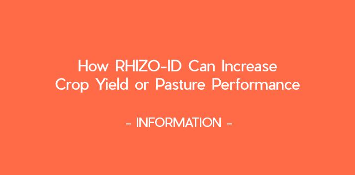 How RHIZO-ID can increase crop yield or pasture performance